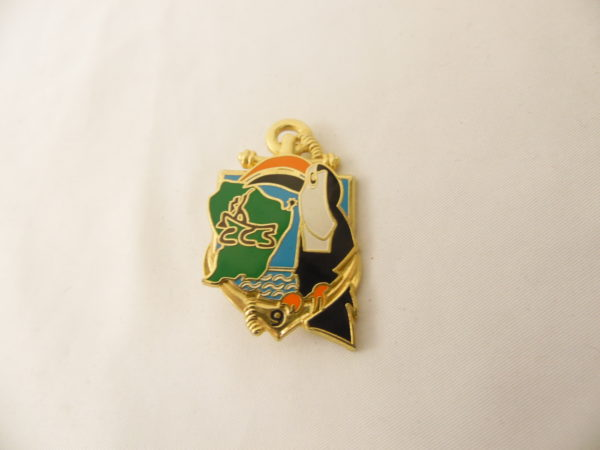 Insigne Militaire Français - 9 ème R.I.M.A.