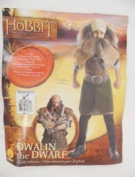 Déguisement enfant - The Hobbit - Dwalin