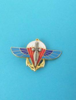 Insigne Militaire 2ème RPIMA